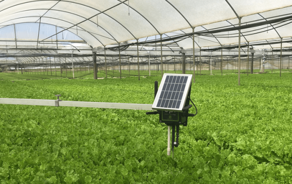 Smart greenhouse monitor and control